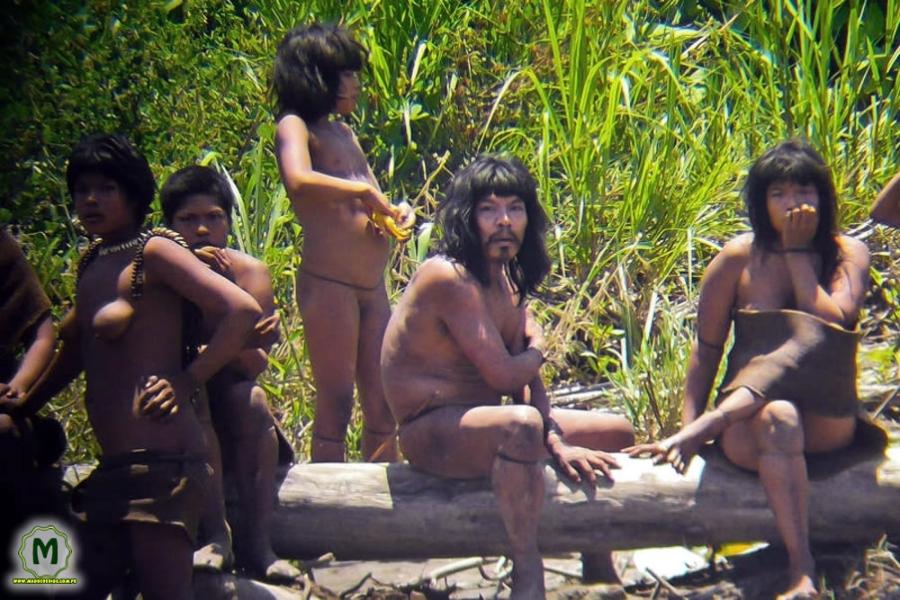 Reserva Nacional de Tambopata 01